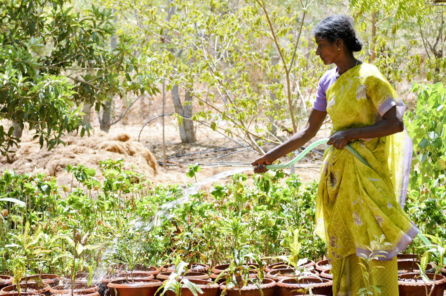 Supporting Farmers in Tamil Nadu, India
