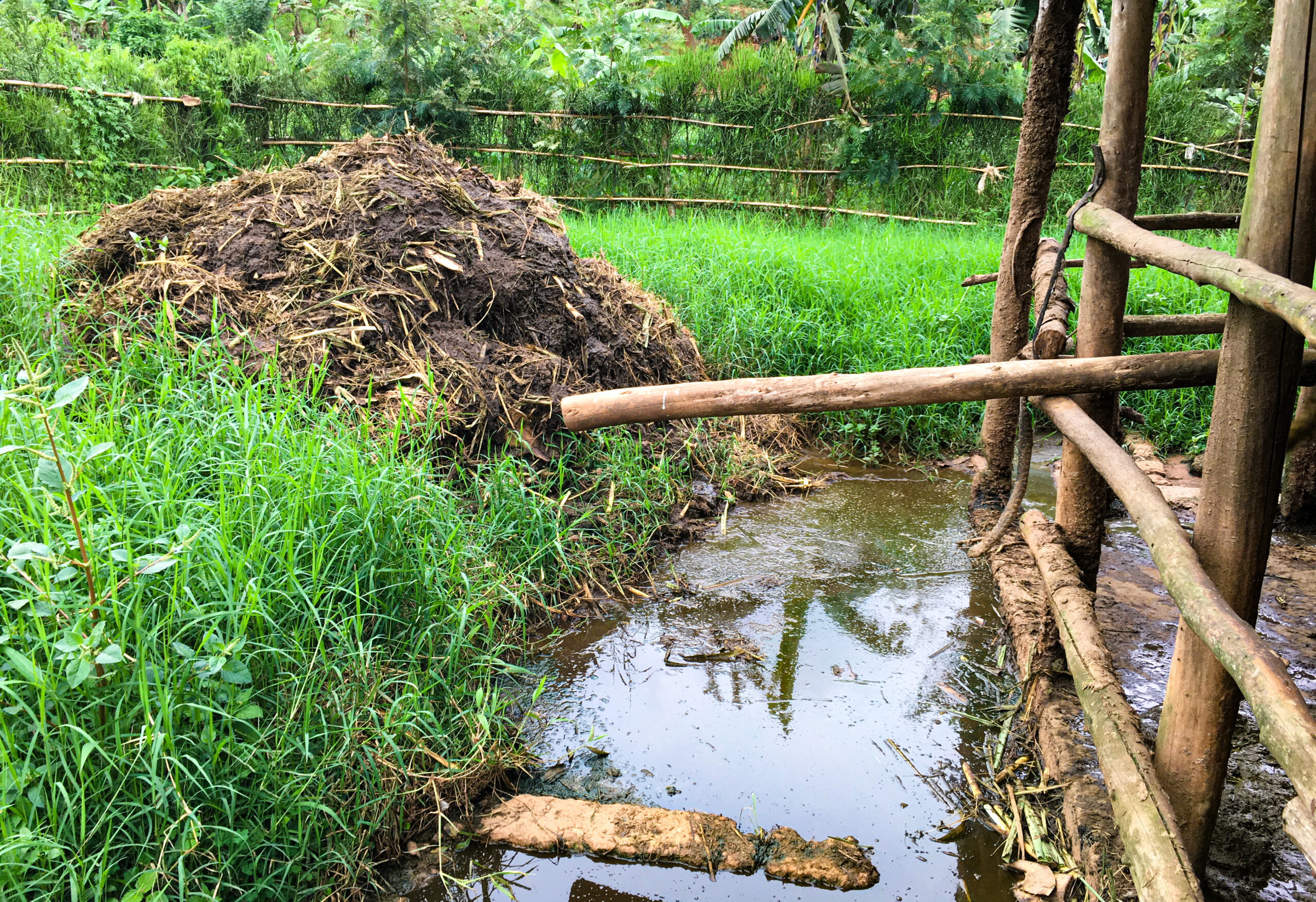 Transforming the soil through microbial science