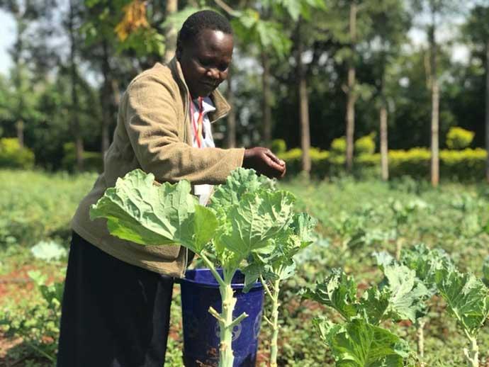 African farmer tending some crops