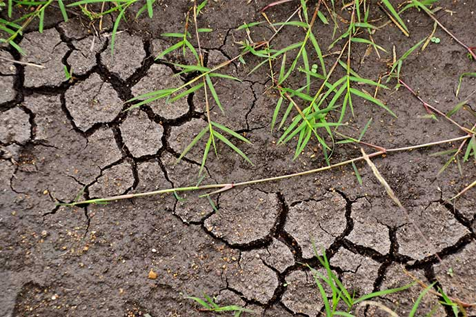 Cracked and degraded soil