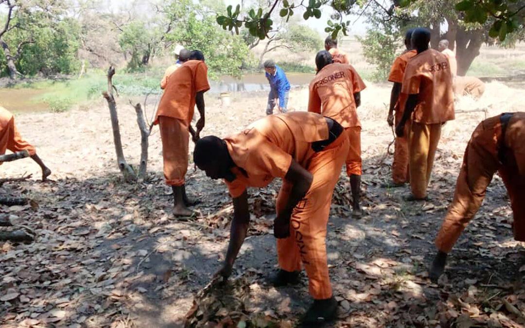 Giving prisoners a future in Zambia